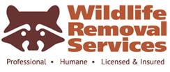 Wildlife Removal Experts for 20 years specializing in Animal Control, Pest Control, and Wildlife Exclusion